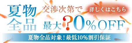 夏物クリアランスセール!最大80%OFF!